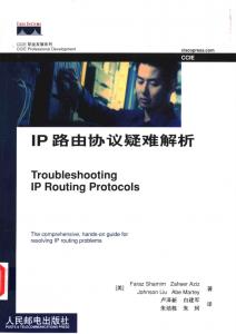 《IP路由协议疑难解析》