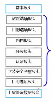 图1 IPv6扩展报头出现顺序
