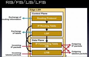 MPLS转发机制中所用到的Table的图示