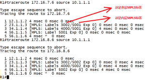 MPLS L3VPN为什么要使用两层MPLS标签?ping包测试