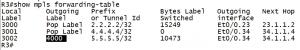 MPLS L3VPN为什么要使用两层MPLS标签?R3上show mpls forwarding-table