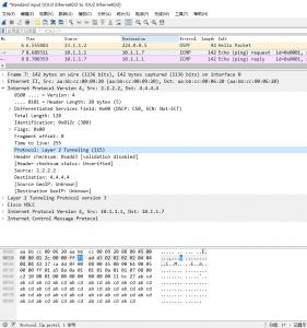 带有 L2TPv3 数据包的 Wireshark 截图