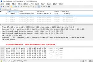 在IOU9上ping 10.9.1.10时,IOU1的e 0/2口上的抓包