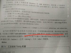 第 327 页,关于 not-advertise 的描述