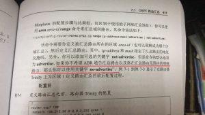 第 411 页,关于 not-advertise 的描述