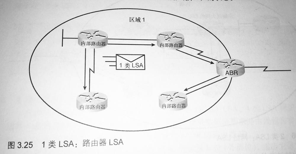1 类 LSA:路由器 LSA