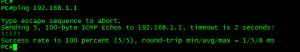 PC 可以得到地址,同时可以 ping 通网关