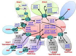OSPFv2 LSA 类型总结
