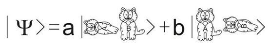 用薛定谔的猫做比喻