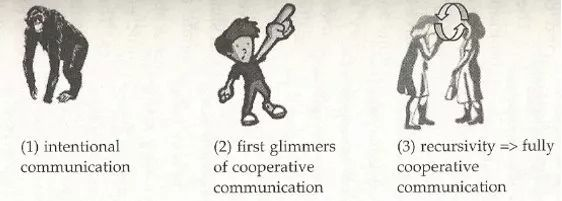 ( 1 ) intentional communication ( 2 ) first glimmers of cooperative communication ( 3 ) recursivity → fully cooperative communication